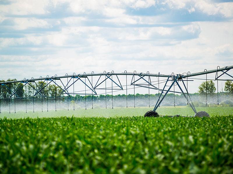Irrigation - Crop Spraying